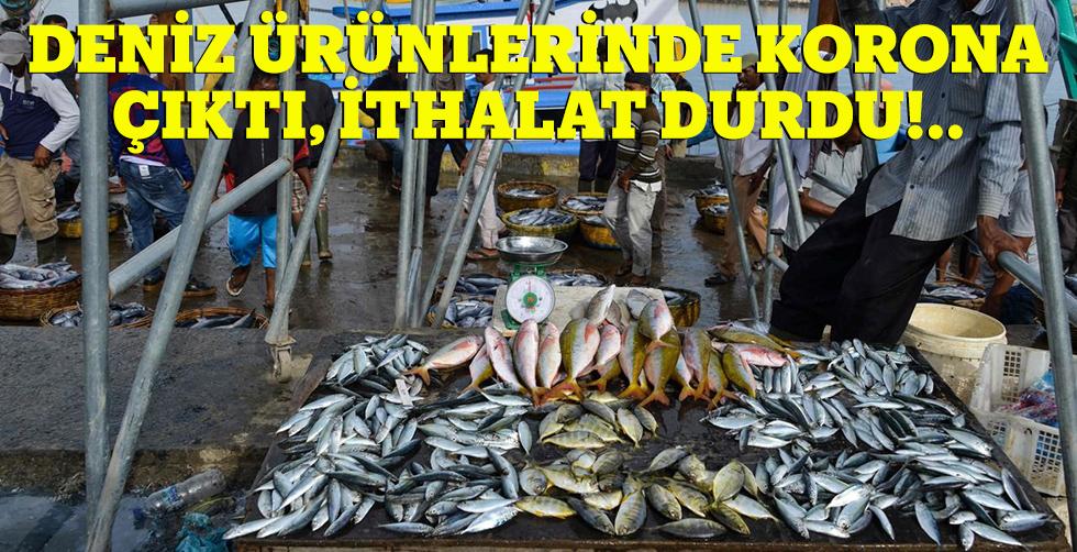 Deniz ürünlerinde korona çıktı…