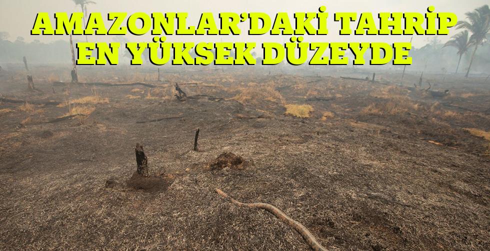 Amazonları tahrip en yüksek düzeyde