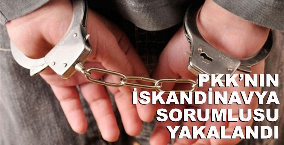 PKK'nın İskandinavya sorumlusu…